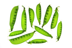 Snow peas, Pisum sativum, Pisum saccaratum Royalty Free Stock Photos