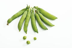 Snow peas in pod Royalty Free Stock Images
