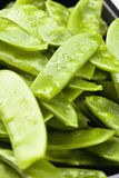 Snow peas in pod, close up Stock Photography