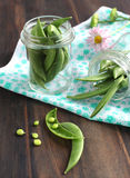 Snow peas pods in jar Stock Image