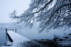 Snow on the pier. Winter landscape with snow covered tree and pier. Lake covered with thin ice. Switzerland Stock Photography