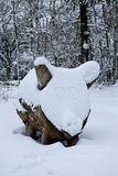 Snow pig Royalty Free Stock Images