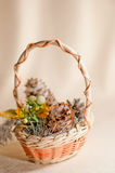 Snow pine cones in a gift basket Royalty Free Stock Images