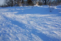 Snow plain. The snow sparkling under beams of the bright sun, close up Royalty Free Stock Photos