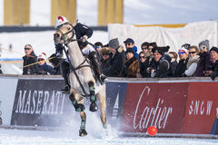 Snow Polo Cup 2017 Sankt Moritz Stock Images