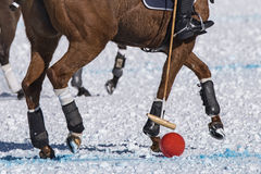 Snow polo Royalty Free Stock Photography