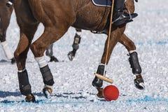 Snow polo Royalty Free Stock Photography