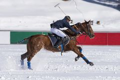 Snow polo scene during a match. Snow polo scenre during a match free from trademarks Stock Image