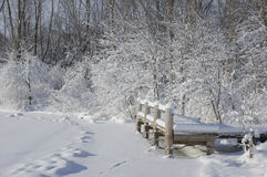 Snow Pond. A frozen pond is covered in fresh snow Royalty Free Stock Photo