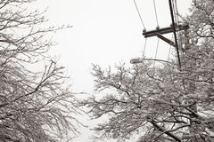 Snow on power lines, snow storm Stock Photography