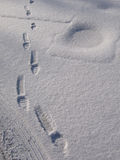 Snow Prints. Footprints through powdery snow: a good background Royalty Free Stock Image
