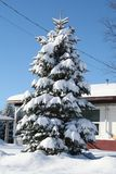 Snow in Quebec. Canada, north America. Royalty Free Stock Photo