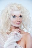 Snow queen Stock Images
