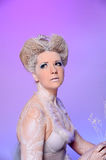 The Snow Queen Stock Photography