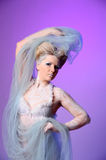 The Snow Queen Stock Image