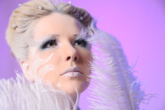 The Snow Queen Royalty Free Stock Photography