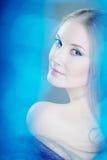 Snow queen. The image of the girl, snow queen Stock Photos