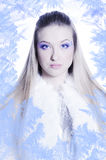 Snow Queen. Beautiful girl in white and silver dress in the frame of the Snowflakes Royalty Free Stock Photos
