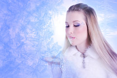 Snow Queen. Beautiful girl in white and silver dress in the frame of the Snowflakes Royalty Free Stock Images