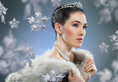Snow Queen. With a crown Royalty Free Stock Image