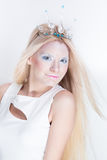 Snow queen beauty make up Royalty Free Stock Photos
