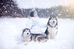 Snow-queen. Fairy tale girl with Huskies or Malamute. Beautiful snow queen witn dogs. Christmas Stock Photo