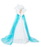 Snow queen, fairy tale. Isolated on white background Royalty Free Stock Photography