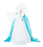 Snow queen, fairy tale. Isolated on white background Stock Images
