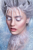 Snow Queen.Fantasy girl portrait. Winter fairy portrait.Young woman with creative silver artistic make-up. Winter Portrait. Royalty Free Stock Image