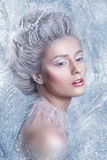 Snow Queen.Fantasy girl portrait. Winter fairy portrait.Young woman with creative silver artistic make-up. Winter Portrait. stock image