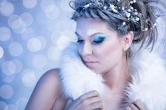 Snow Queen with fur. Over winter background Stock Photography