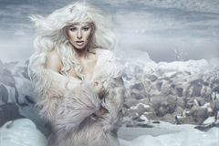 Snow queen on the ice island Stock Images