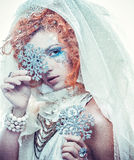 Snow Queen. Over white background Royalty Free Stock Photo