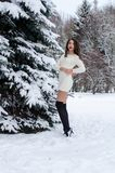 Snow queen. Portrait of a winter woman. Snow queen. Portrait of a winter woman Royalty Free Stock Photos