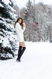 Snow queen. Portrait of a winter woman. Snow queen. Portrait of a winter woman Stock Photo