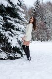 Snow queen. Portrait of a winter woman. Snow queen. Portrait of a winter woman Stock Photos
