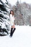 Snow queen. Portrait of a winter woman. Snow queen. Portrait of a winter woman Stock Photography