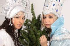 Snow Queen and Snow Maiden. Girls in costumes Snow Queen and Snow Maiden Tree Royalty Free Stock Image