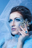 Snow Queen and Snowflake Stock Images