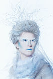 Snow queen with unusual makeup Stock Images