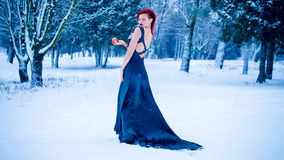 Snow queen winter yong girl Stock Images