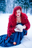 Snow queen winter yong girl Royalty Free Stock Photography