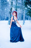 Snow queen winter yong girl in forest. Beautiful snow queen winter yong girl, rad hair, fairy tale stock photo