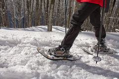 Snow rackets people Royalty Free Stock Photography