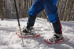 Snow rackets people. Detail of snow racketing people on a snowy track in the wood Stock Photography