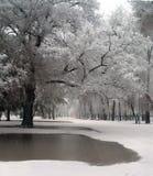 Snow and rain stock image