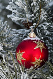 Snow on red christmas bauble Stock Images
