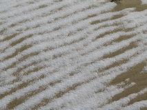 Snow on rippled sand. Details of snow covered rippled sand Stock Images