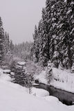Snow and River. Snow falling on a mountain river Royalty Free Stock Photos