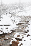 Snow river Royalty Free Stock Images